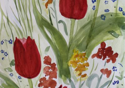 tulipaner2_8148-705x1024