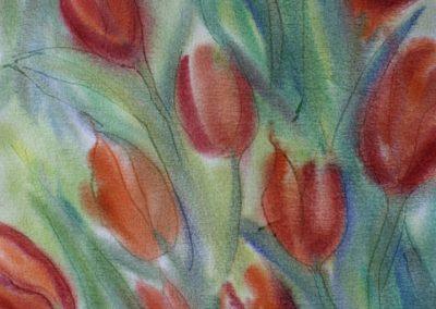 tulipaner_8147-719x1024